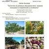 """Visita Guidata """"Tecniche di potatura del pistacchio: sistemi innovativi e tradizionali a confronto"""""""