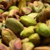 Al via la raccolta 2018 del pistacchio della Valle del Platani: annata di scarica ma produzione stimata buona