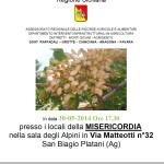 locandina pistacchio