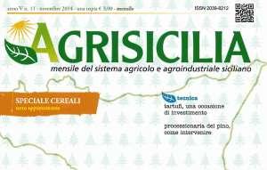 Copertina Agrisicilia